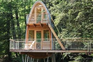 baumraum-solling-treehouse-designboom-02